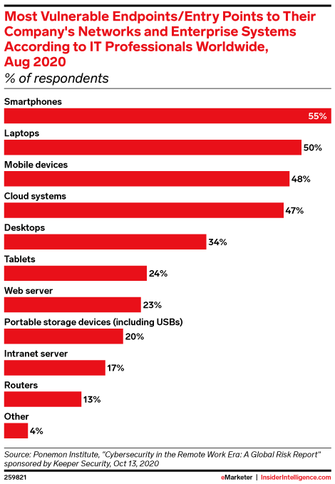 Most Vulnerable Endpoints/Entry Points to Their Company's Networks and Enterprise Systems According to IT Professionals Worldwide, Aug 2020 (% of respondents)
